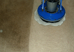 orbital carpet cleaning machine